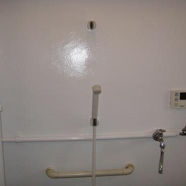 浴室・トイレ天井壁塗装